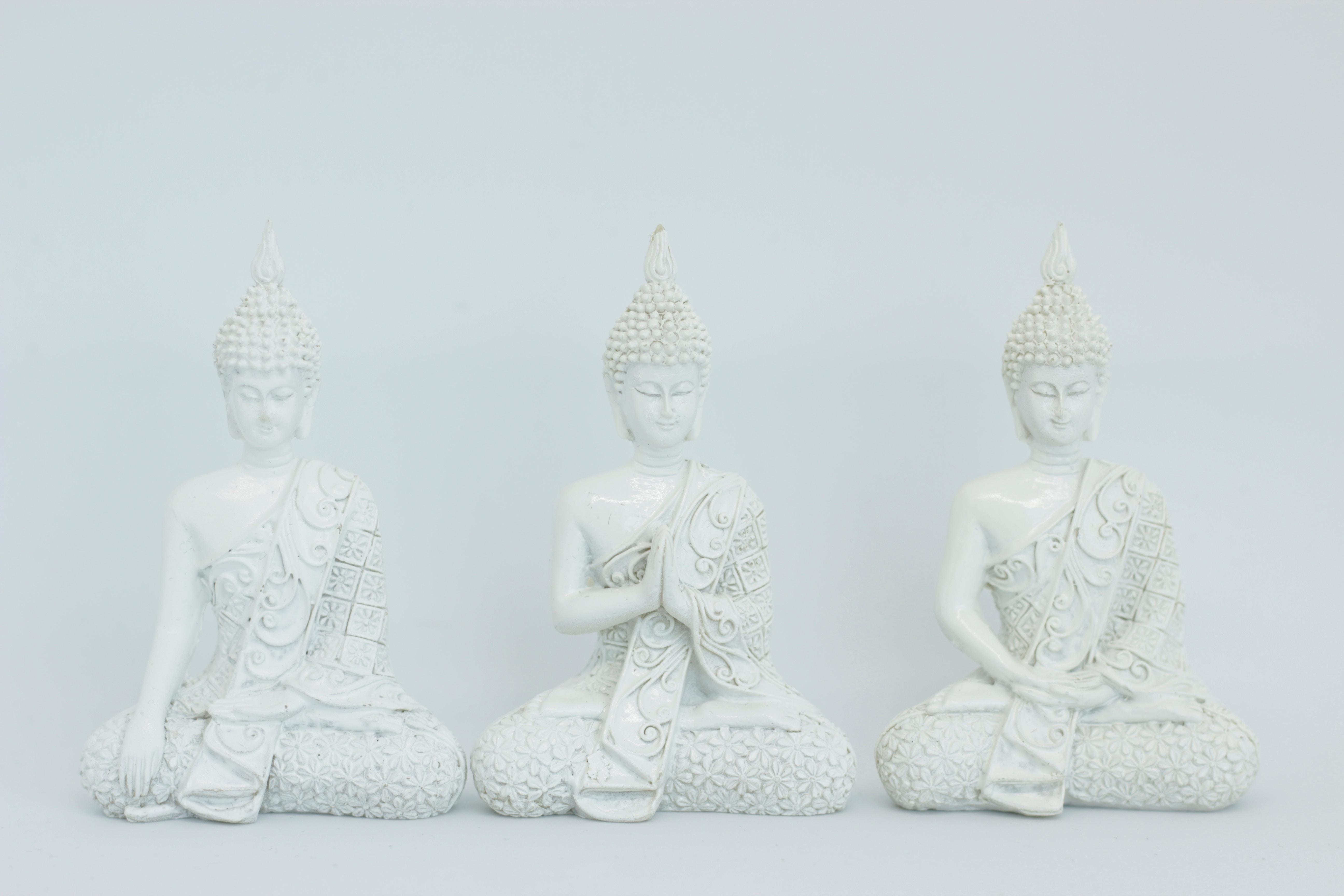 MCKS Yoga Arhática - Nível Preparatório